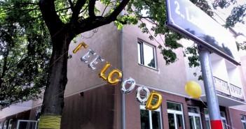 Feelgood Unternehmenskultur gedifo Christina Merl